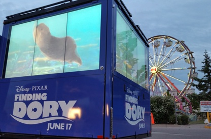 Finding Dory - XM