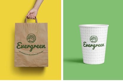 Branding for Evergreen