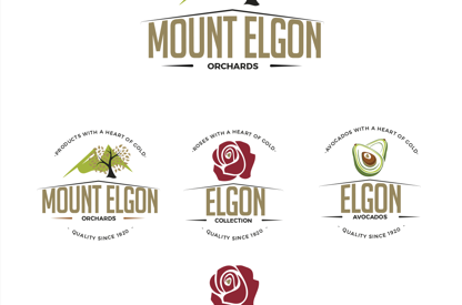 Mount Elgon Orchards