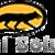 Fox Digital Solution Logo