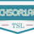 Tech Soft Labs Logo