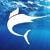 Big Marlin Group Logo