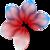 Skkepper Logo