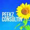 Peekz ConsultiN LLC Logo