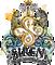 Siren Design Group Logo