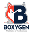 Boxygen Managed IT Support and Voip Services