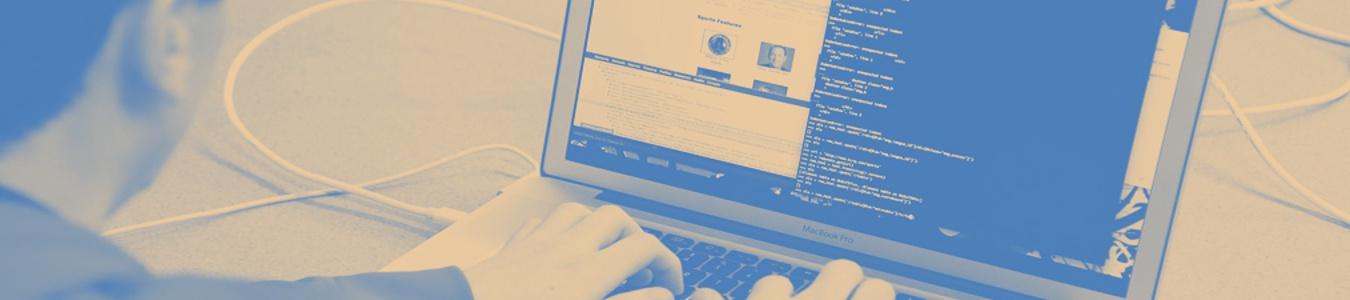 The Best Drupal Website Development Companies